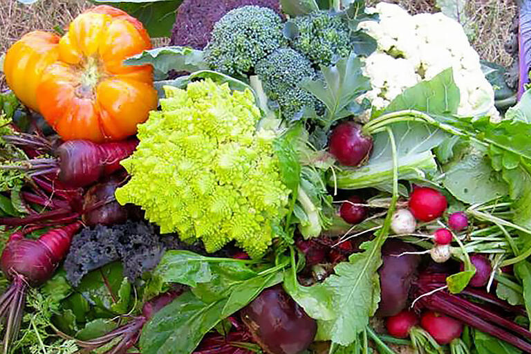 A photo of assorted fruits and vegetables.