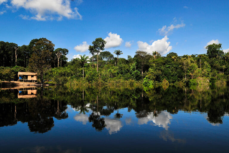 A house and the forest are reflected in the Amazon river