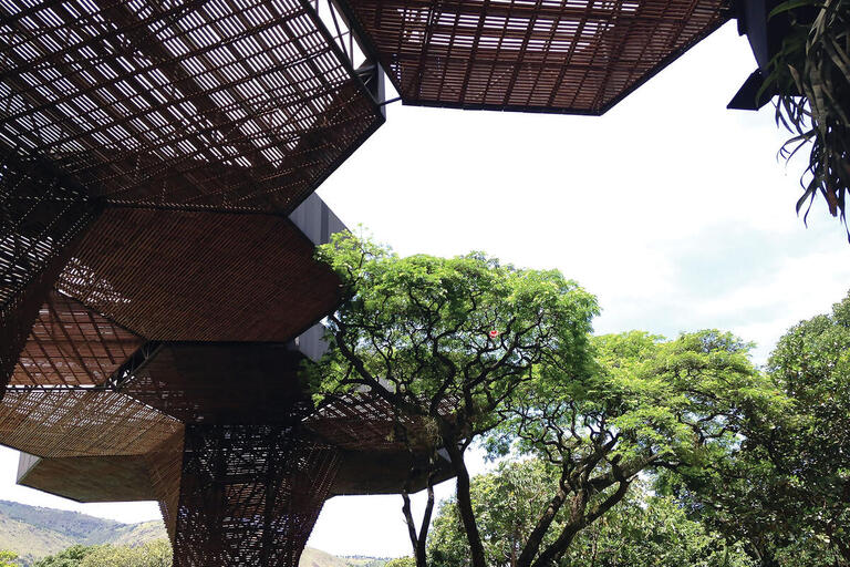 Huge wooden trellises form the orchidarium at the renovated Medellín Botanical Gardens, Colombia. (Photo by SLClaasen.)