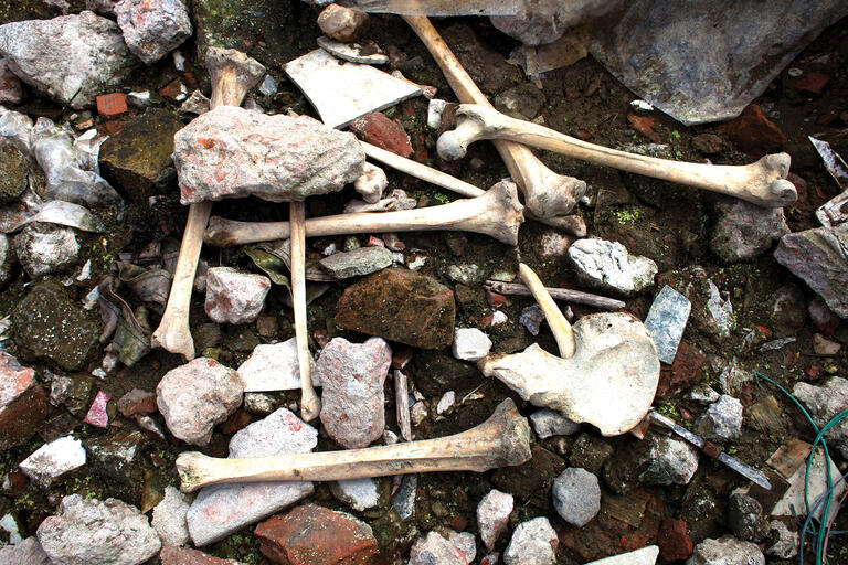 Human bones remain amidst the rubble two years after the Rana Plaza building collapse in Dhaka, Bangladesh. (Photo from Anadolu Agency/Getty Images.)