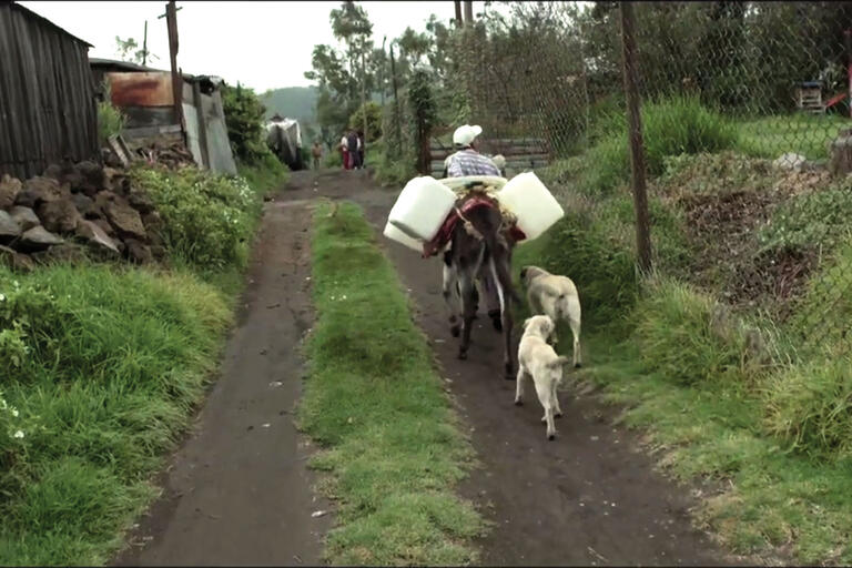 """A screen shot from """"H2Omx"""" shows a man leading his donkey to fetch water on the outskirts of Mexico City. (Photo courtesy of Icarus Films.)"""