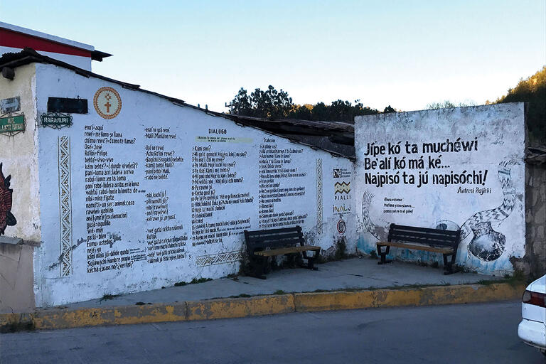 A lexicon of Rarámuri words and their Spanish translation form a mural in Chihuahua, Mexico. (Photo by Malcolm K.)