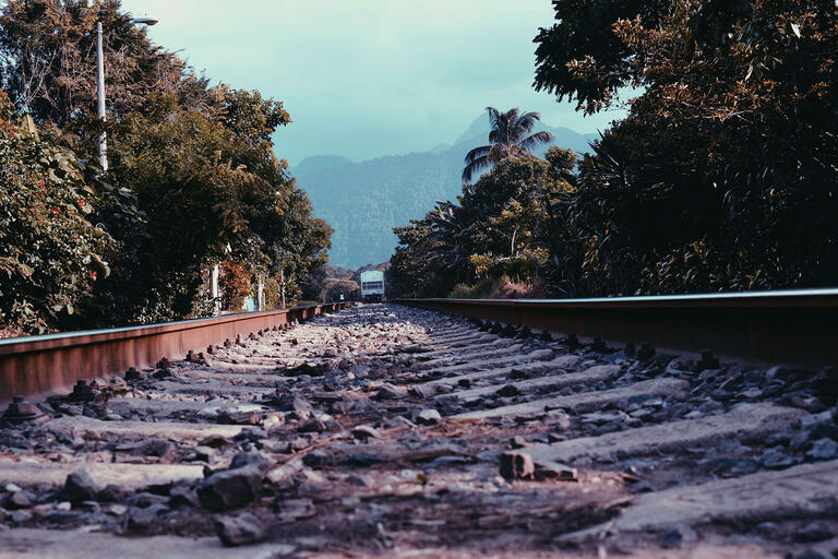 Railroad tracks in Veracruz, on which a train called La Bestia transported tens of thousands of Central American migrants each year. (Photo by Levi Vonk.)