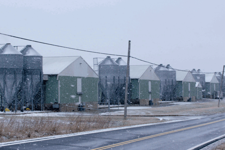 Farm buildings and warehouses in the snow