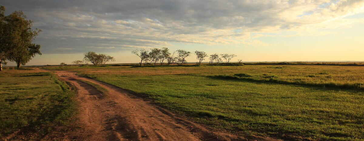A field and dirt road at sunset