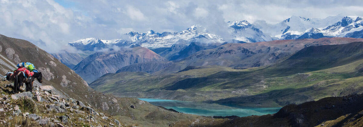 Andes mountains with packhorse and reasearchers