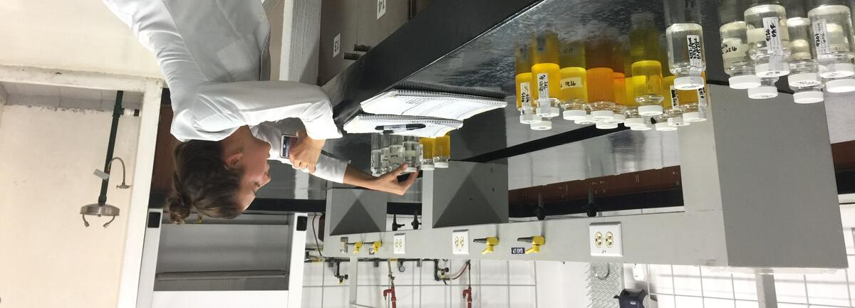Student in a lab looking at water samples