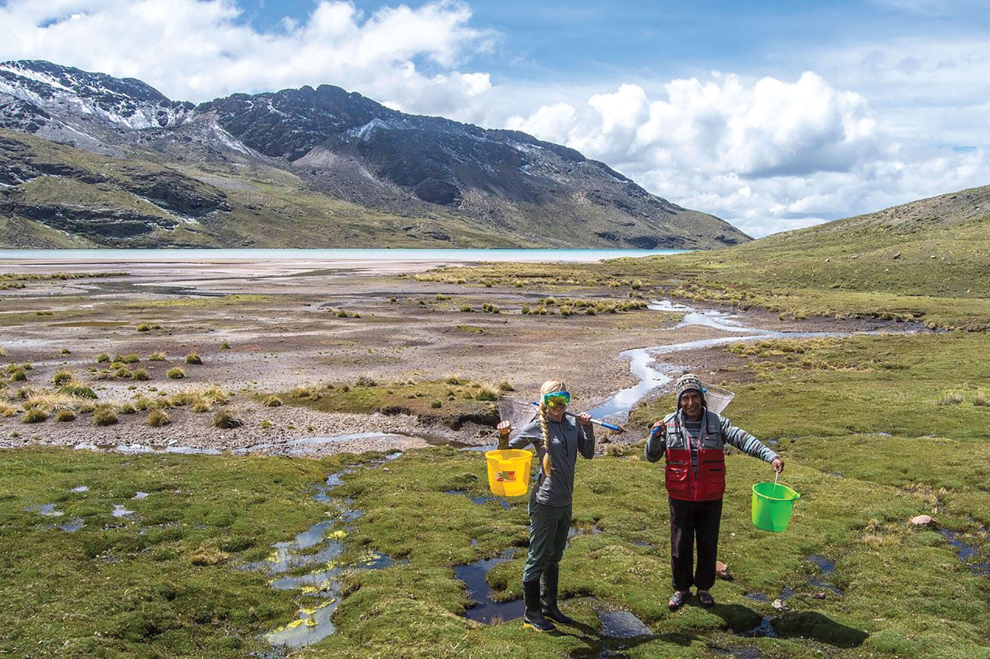 Emma Steigerwald and research assistant Gumercindo collecting samples of frogs high in the Andes, March 2018. (Photo courtesy of Emma Steigerwald.)