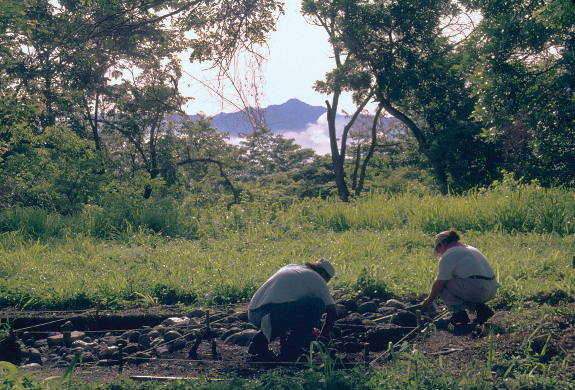 Julia Hendon leads excavations in the fields at Cerro Palenque, Honduras, in 2002. (Photo by Jeanine Lopiparo.)